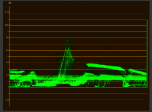Same shot, viewed with a Waveform scope, showing IRE value