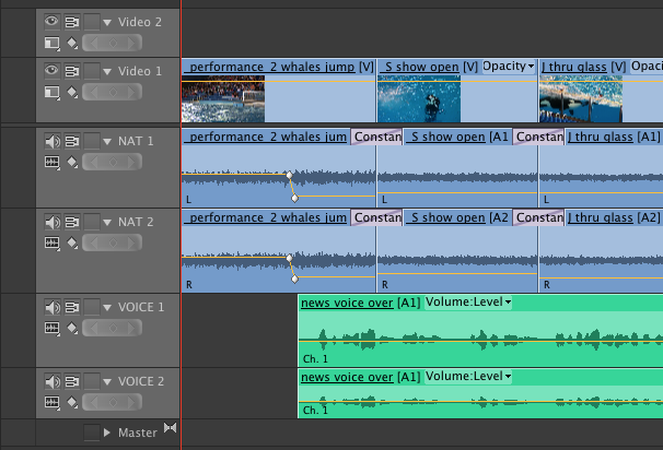 Audio tracks with keyframe adjustments